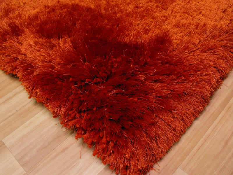 Plush Rust Shaggy Rug